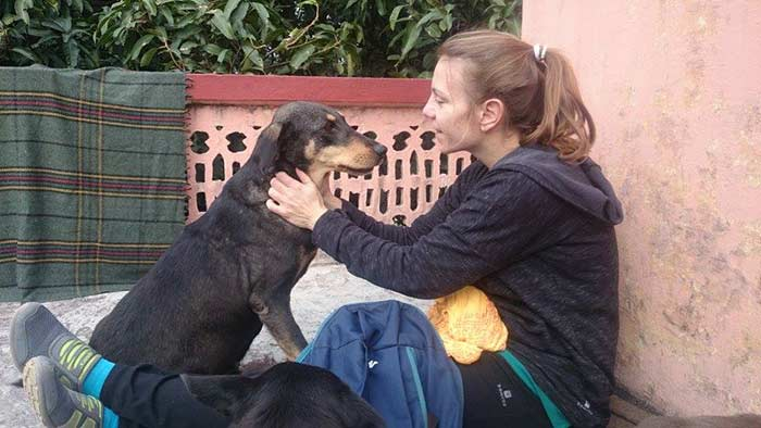 Month Long Rishikesh Animal Rescue Project Organized at Parmarth (10)