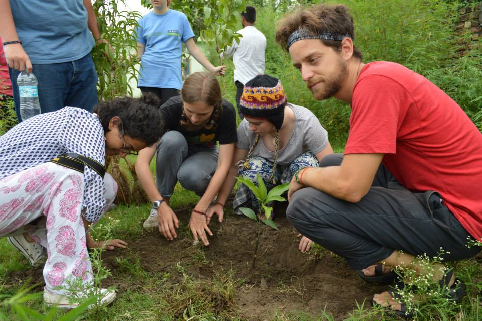 Serving at Parmarth Cow Shelter and Planting Trees (15)