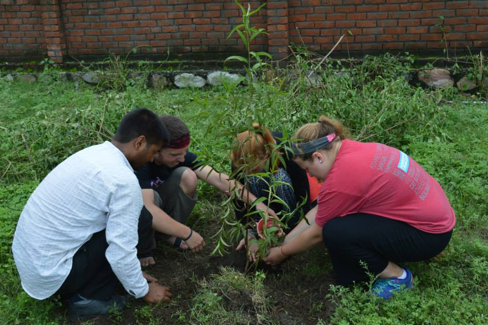 Serving at Parmarth Cow Shelter and Planting Trees (19)