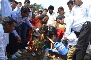 Shakti-aur-Prakriti-Tree-Plantation-(5)